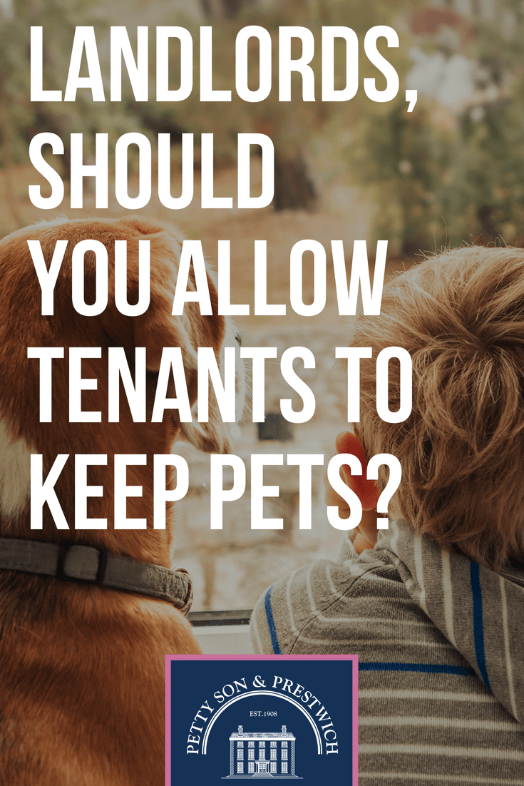 landlords should you allow tenants to keep pets