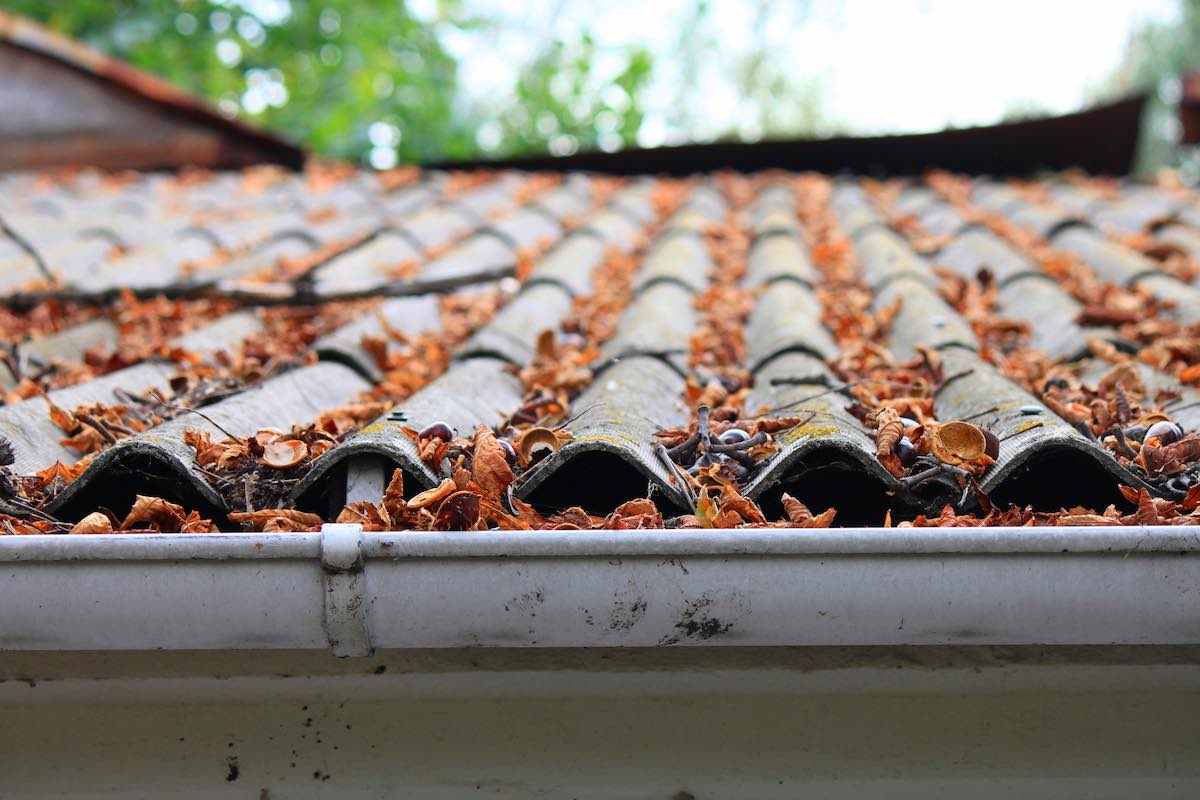 clear gutters winter landlords check